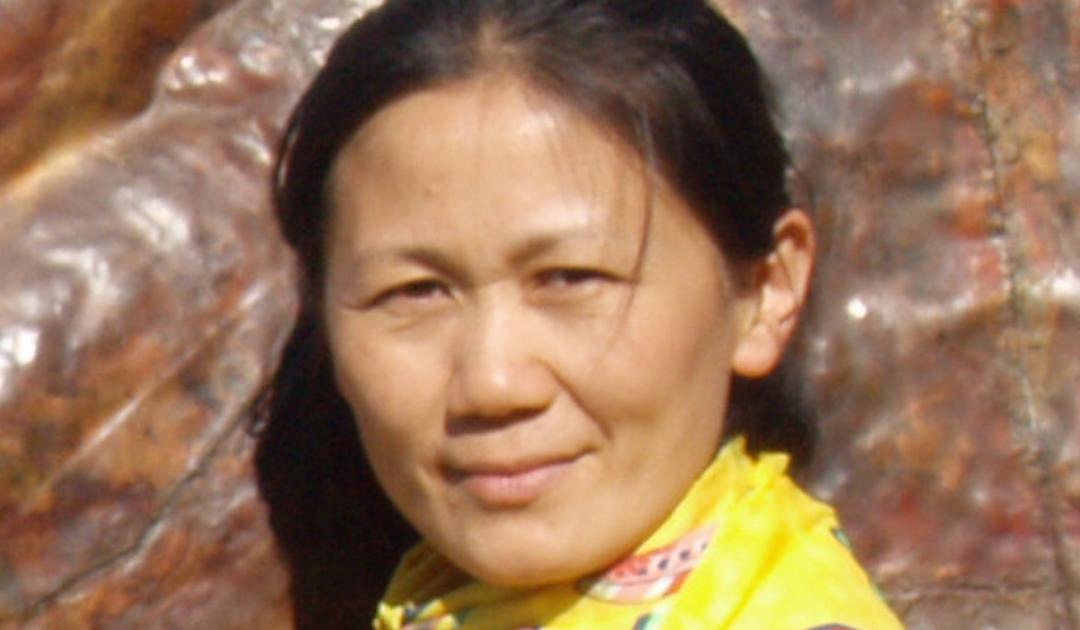 Wang Jing: kunstner og lærer på Tvind i mere end 20 år
